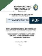 Proyecto de Investigacion Formtiva 2019 i.