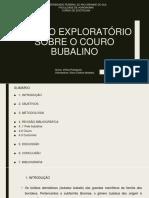 Estudo Exploratório Sobre o Couro Bubalino