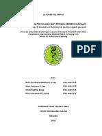 SAP_CVA_STROKE.doc