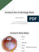 19.1 Anatomi Dan Embriologi Mata