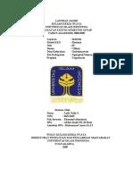 contoh laporan KKN