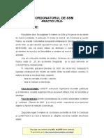 Practici Utile COORD.de SSM