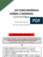 Concordância nominal mapa mental Pai dégua.pptx