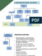 Estructura de Recursos Humanos (PDF)