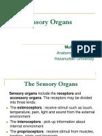 03. Sensory Organs