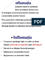 Inflamatia morfopatologie