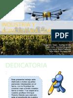 industria y agricultura como desarrolo del pais (GRUPO 2).pptx
