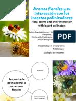 Aromas Florales y Su Interacción Con Los Insectos