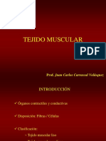 Tejido Muscular 1