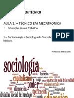 Aula 1 - Da Sociologia a Sociologia Do Trabalho - Definições