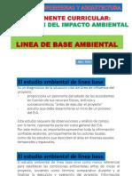 2. LINEA DE BASE AMBIENTAL.pdf