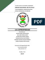 MONOGRAFIA COPROPIEDAD.docx