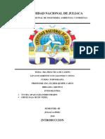 UNIVERSIDAD NACIONAL de JULIACA Practica Numero 3 Levantamiento Con Jalones y Cinta