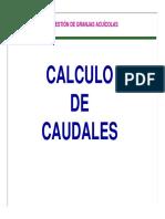 CALCULO CAUDALES