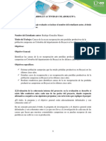 DESARROLLO ACTIVIDAD COLABORATIVA.docx