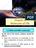 1.5 DNA and RNA Molecules-1