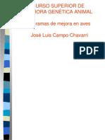 JL Campo.pdf