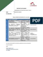 REPORTE DE PELIGROS.pdf