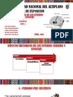 GRUPO 4 - ASPECTOS HISTORICOS DE LOS ESTUDIOS LENGUAJE CEREBRO.pptx