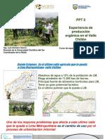 Experiencia de Produccion Organica en el Valle Chillon, en Lima  Peru