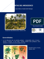 Expo Paleontología