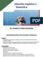 Clase 6 Contaminación Organica 2019.pdf