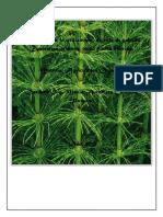 plantas biocidas.docx