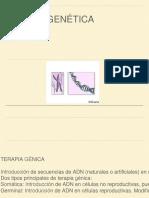 Terapia Genica.pptx