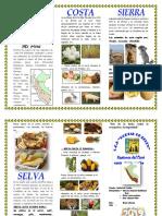 REGION COSTA,SIERRA Y SELVA.docx