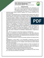 INFORME TRATAMIENTO.docx