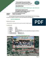 """I ENCUENTRO PERUANO DE PLANTACIONES FORESTALES"" LIMA PERÚ 2019"