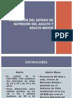 evaluación del estado de nutrición del adulto y adulto mayor