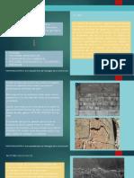 Patologia de La Piedra-PDF Final