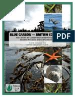 Blue Carbon Bc Report Final_web