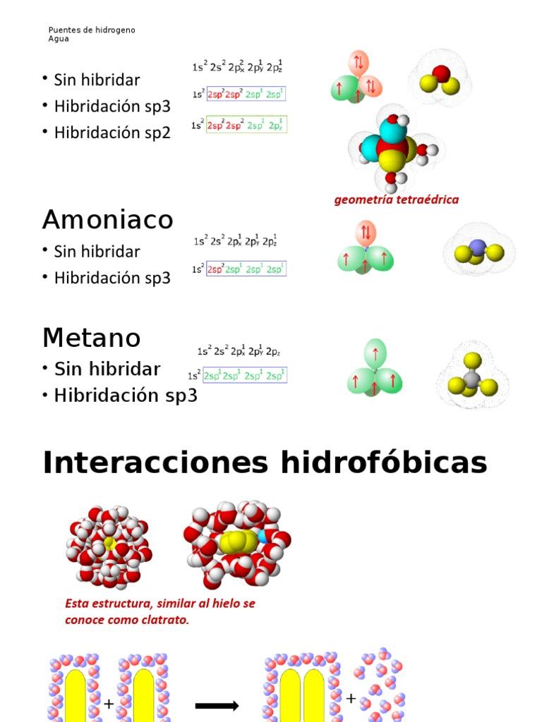 Interacciones Hidrofobicas