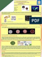 Nanovaccines.pdf