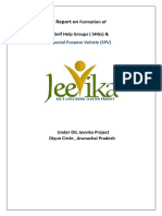 Report onformation of  SHGs & SPV under OIL Jeevika project.pdf