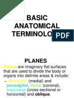 Anatomy Term