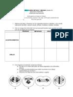 Refuerzo-ciencias-naturales-grado-6.doc