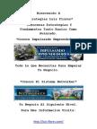 Estrategias Marketing Luis Flores