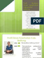 Profil Budaya Dinas Kesehatan Kabupaten Belitung