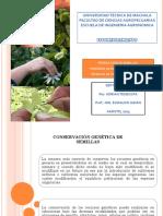 POLINIZACION_MANUAL_O_ARTIFICIAL.pptx