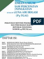 01f43_01Pedum_P3TGAI_2018