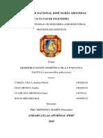 Proyecto de Osmodeshidratcion de La Papayita Nativa[1]