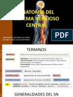 Anatomia Sistema Nervioso -Medula Uns 2019