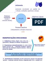 teorias emocionais, esquemas.ppt