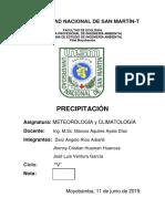 PRECIPITACIÓN_informe[1] - Copia