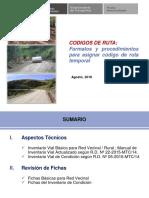 Formatos y Codigo de Ruta Provisional