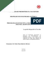 Leopoldo Bulgarelli de Carvalho - Computação Evolutiva