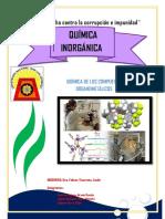 Quimica Organometalico